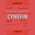 New work Blog Workout Cynefin