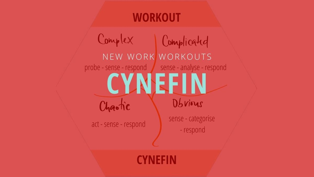 Workout für Entscheidungen: Cynefin Framework